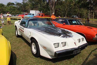 Trans Am Firebird
